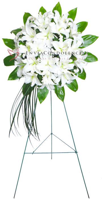 Corona Fúnebre Ángel Fugaz